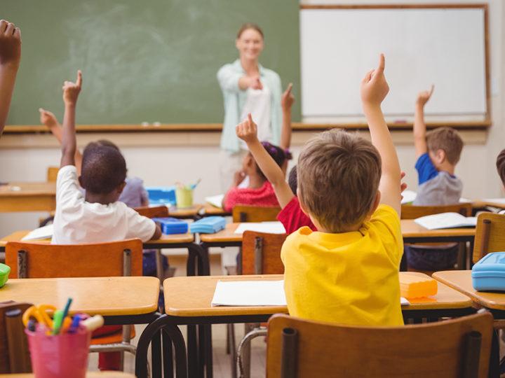 """Coronavirus, Gallone (FI): """"Salviamo le scuole paritarie dalla chiusura"""""""