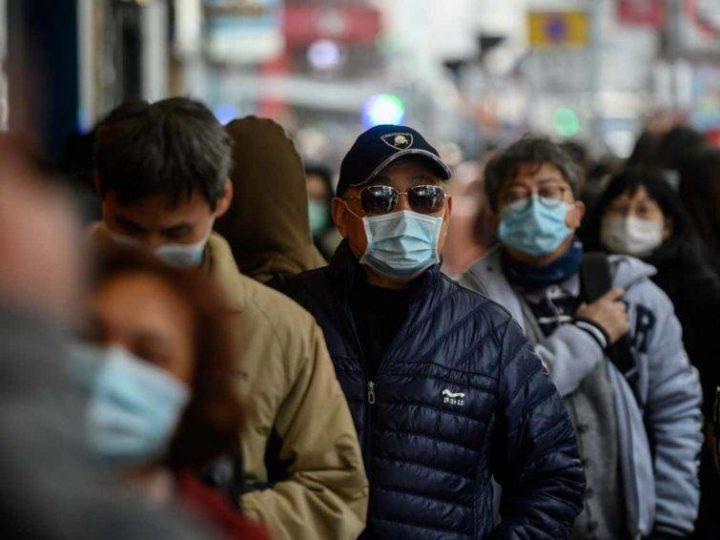 """Coronavirus, Gallone e Fontana (FI): """"Alle famiglie mascherine gratuite, per le imprese abbattere l'iva al 4%"""""""